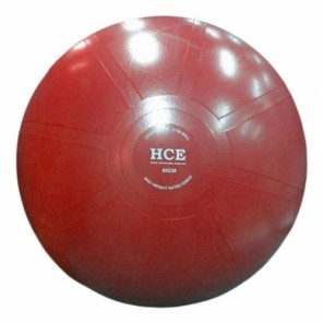 55cm Commercial Gym Ball / Swiss Ball with Pump