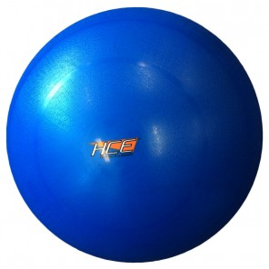 65cm Gym Ball / Swiss Ball with Pump