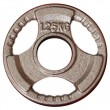 1.25kg Olympic Size Cast Iron Weight Plate